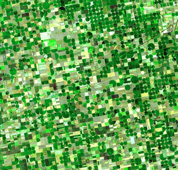 Satellite View Of Crop Circles In Art Print by Education Images