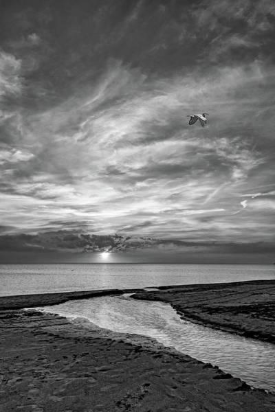 Wall Art - Photograph - Sauble Beach Sunset - Heading Home Bw by Steve Harrington