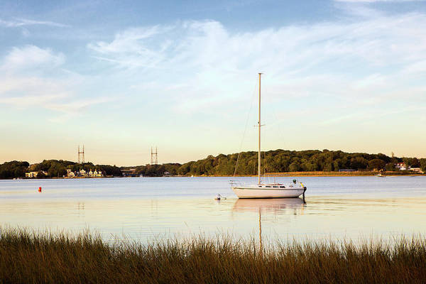 Wall Art - Photograph - Saugatuck Sailboat by Stephanie McDowell