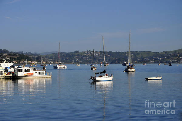 Wall Art - Photograph - Sausalito 02 by Andrew Dinh