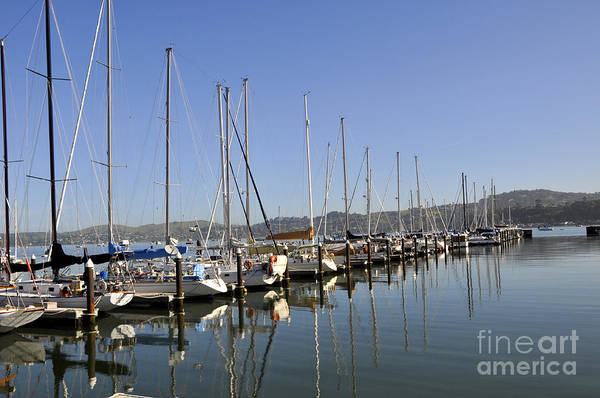 Wall Art - Photograph - Sausalito 03 by Andrew Dinh