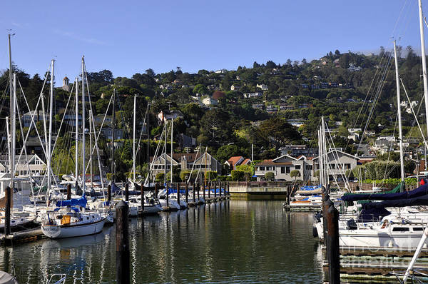 Wall Art - Photograph - Sausalito 04 by Andrew Dinh