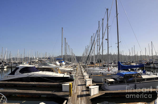 Wall Art - Photograph - Sausalito 05 by Andrew Dinh
