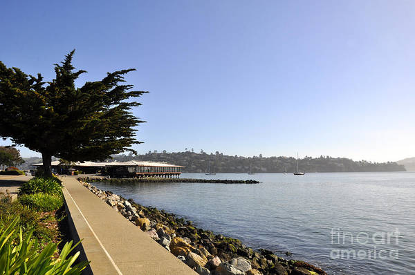 Wall Art - Photograph - Sausalito 06 by Andrew Dinh