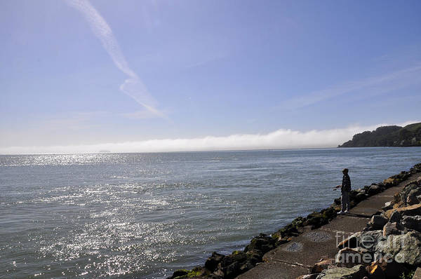 Wall Art - Photograph - Sausalito 10 by Andrew Dinh