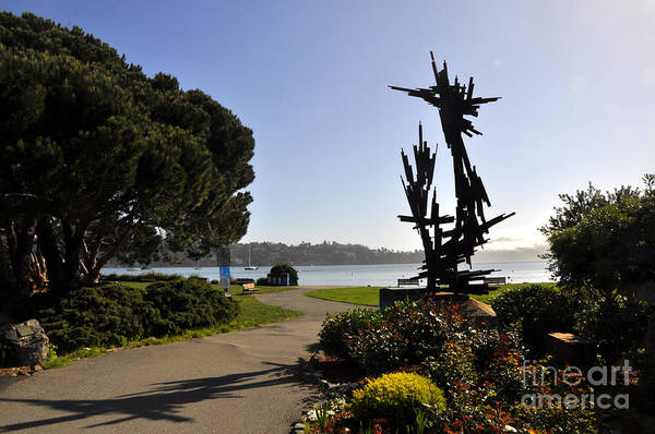 Wall Art - Photograph - Sausalito 12 by Andrew Dinh