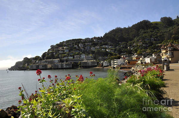Wall Art - Photograph - Sausalito 19 by Andrew Dinh
