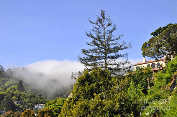 Wall Art - Photograph - Sausalito 20 by Andrew Dinh