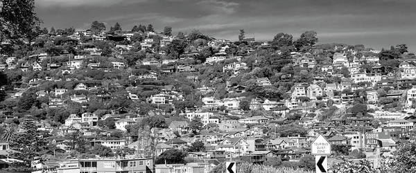Wall Art - Photograph - Sausalito California Housescaping Bw by Betsy Knapp