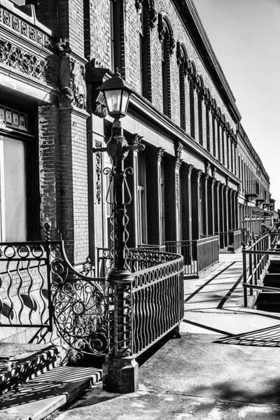 Photograph - Savannah Bw by Framing Places