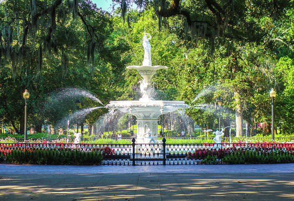 Photograph - Savannah Forsyth Park by Dan Sproul
