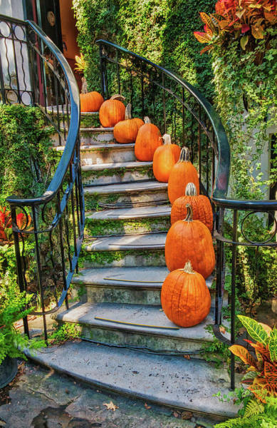 Photograph - Savannah Pumpkin Steps by Gary Slawsky