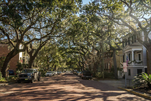 Photograph - Savannah Residential by Framing Places