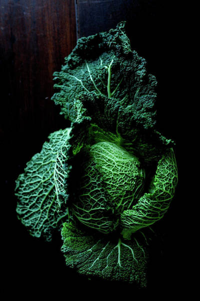 Photograph - Savoy Cabbage by Ingwervanille