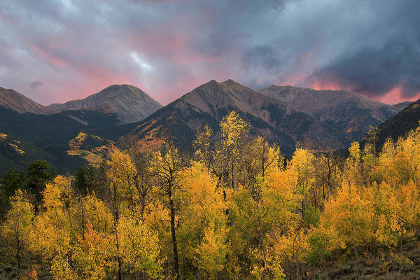Photograph - Sawatch Autumn by Aaron Spong