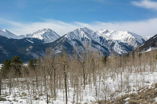 Photograph - Sawatch Winter by Aaron Spong