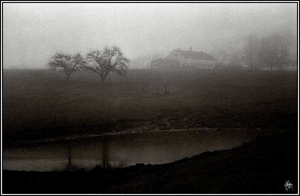 Photograph - Scamman Farm In The Fog by Wayne King