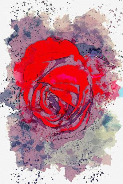 Wall Art - Painting - scarlet rose watercolor by Ahmet Asar by Celestial Images