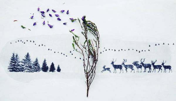 Side-by-side Photograph - Scattered Heather On An Image Of Trees by Fiona Crawford Watson