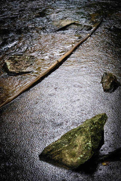 Photograph - Scene By The Creek #1 by Todd Henson