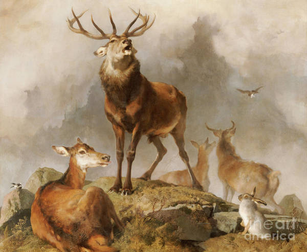 Wall Art - Painting - Scene In Braemar Highland Deer by Edwin Landseer
