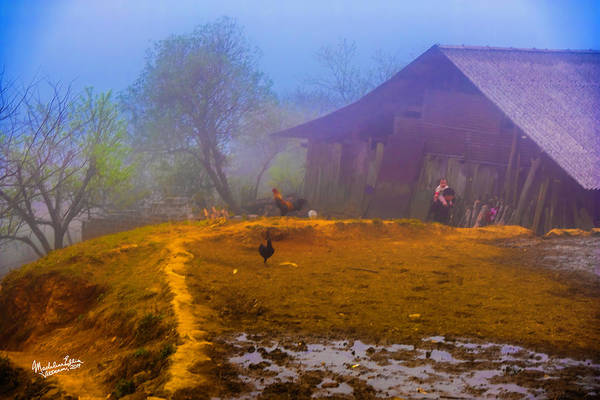 Wall Art - Photograph - Scene On A Hill - Sapa, Vietnam  by Madeline Ellis