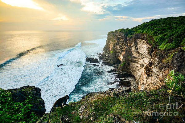 Wall Art - Photograph - Scenic Coastal Landscape Of High Cliff by Zephyr p