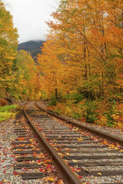 Photograph - Scenic Crawford Notch Railway by Dan Sproul