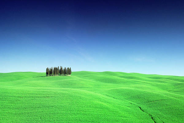 Wall Art - Photograph - Scenic Field by Frank Krahmer