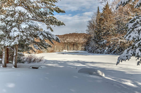 Photograph - Scenic Moose River by Rod Best