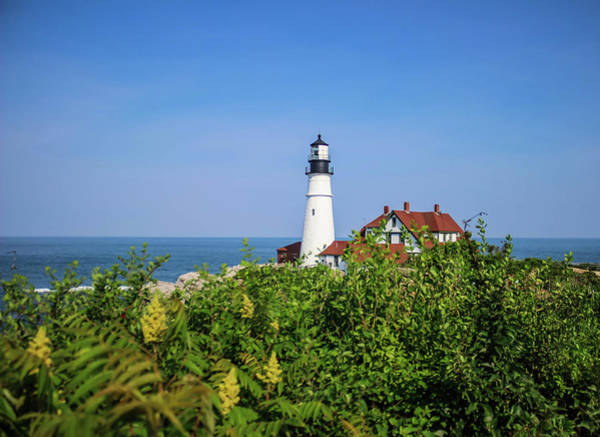Wall Art - Photograph - Scenic Portland Headlight Lighthouse 3 by Debra Forand