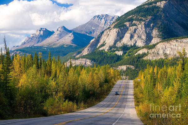 Wall Art - Photograph - Scenic Road Through Jasper National by Damian James
