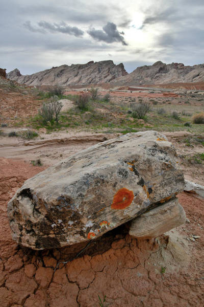 Photograph - Scenic San Rafael Swell And Desert by Ray Mathis