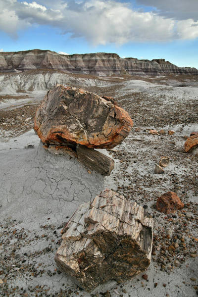 Photograph - Scenic Trail In Blue Mesa Of Petrified Forest by Ray Mathis