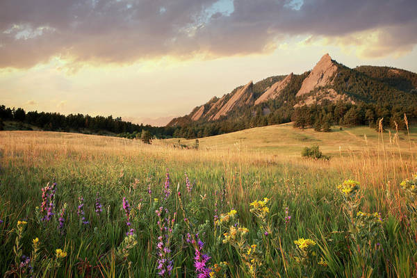 Horizontal Landscape Photograph - Scenic View Of Meadow And Mountains by Seth K. Hughes