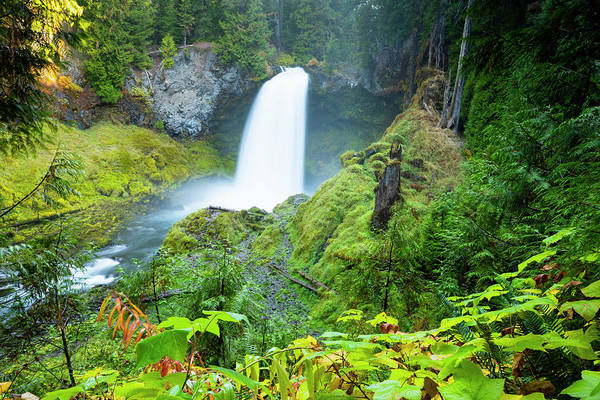 Wall Art - Photograph - Scenic View Of Waterfall, Portland by Panoramic Images
