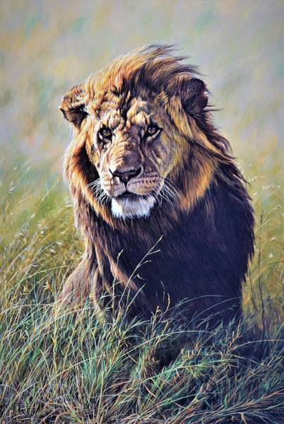 Painting - Scent On The Wind Lion Painting By Alan M Hunt by Alan M Hunt