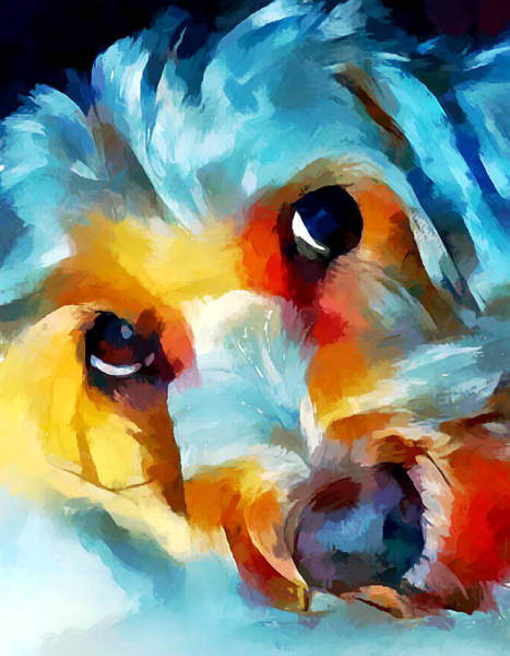 Wall Art - Painting - Schnoodle 2 by Chris Butler