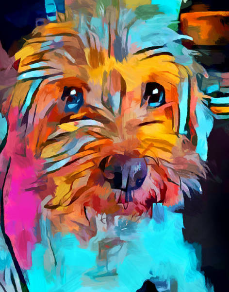 Wall Art - Painting - Schnoodle 4 by Chris Butler