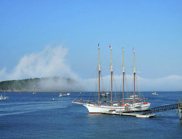 Photograph - Schooner At Bar Harbor Dock  by Lynda Lehmann