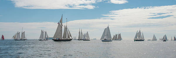 Photograph - Schooners On The Chesapeake Bay by Mark Duehmig