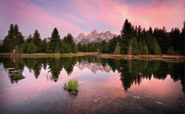 Photograph - Schwabacher Landing Dawn by Ronnie and Frances Howard