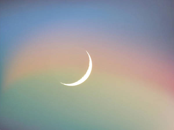 Photograph - Scorpio Citrus Rainbow Crescent by Judy Kennedy