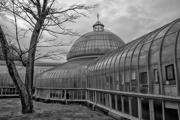 Wall Art - Photograph - Scotland - Glasgow Botanic Gardens In Black And White by Bill Cannon