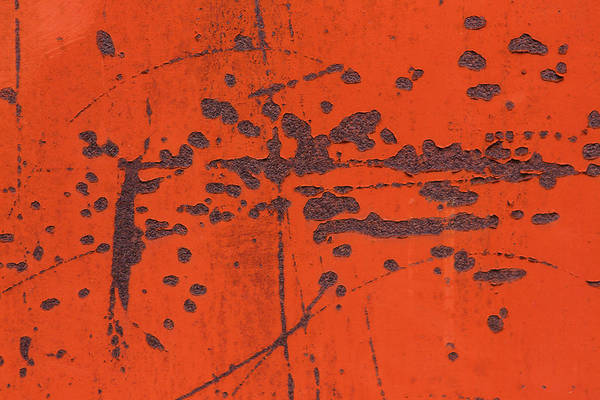 Wall Art - Photograph - Scratched Up Door by Iris Richardson