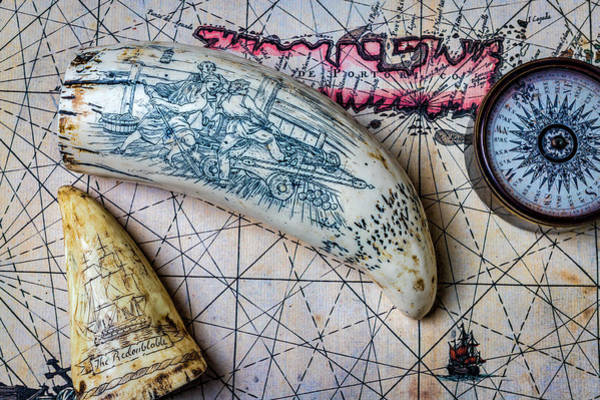 Wall Art - Photograph - Scrimshaw On Old Map by Garry Gay