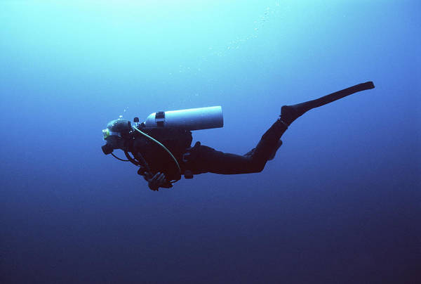 Scuba Diving Photograph - Scuba Diver Swimming, Underwater View by Zac Macaulay