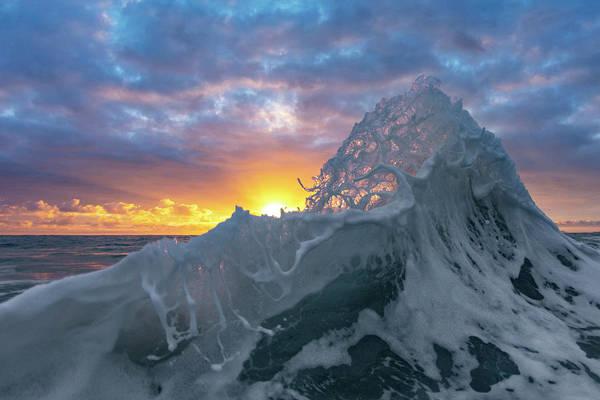 Photograph - Sea-foam Honey-comb by Sean Davey