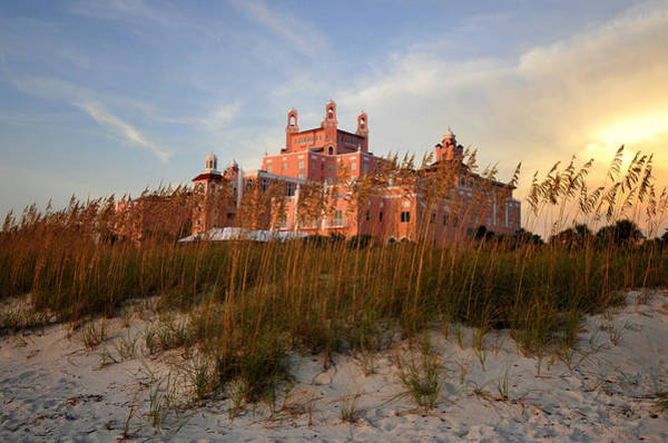 Wall Art - Photograph - Sea Oats And The Don Caesar  by David Lee Thompson