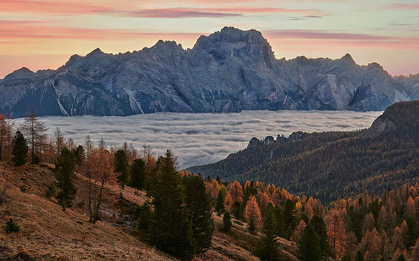 Photograph - Sea Of Clouds In The Dolomites by Jon Glaser